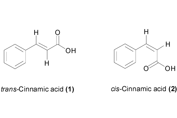 trans cis cinnamic acid - 1